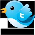 Flying_twitter_700